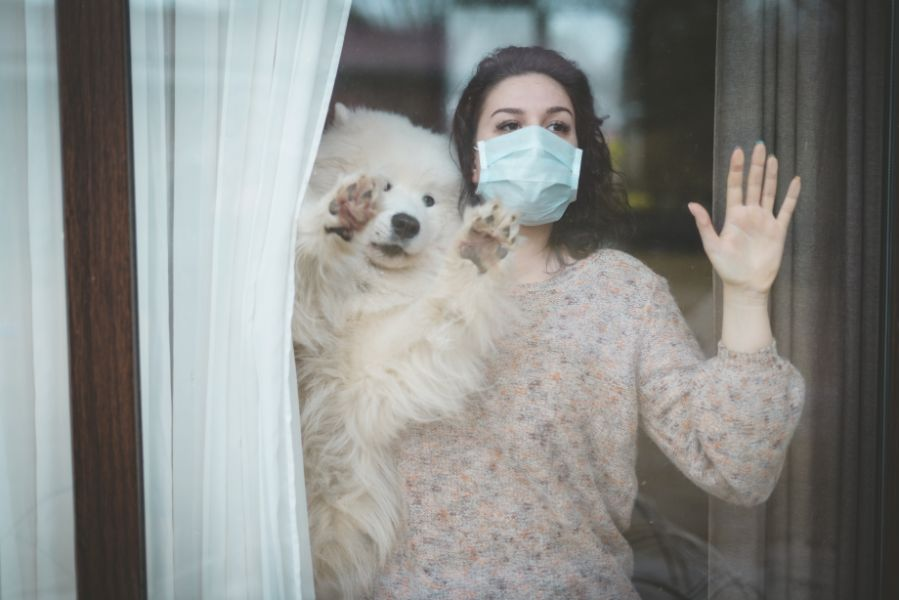 A woman wearing a mask standing with her dog in a window