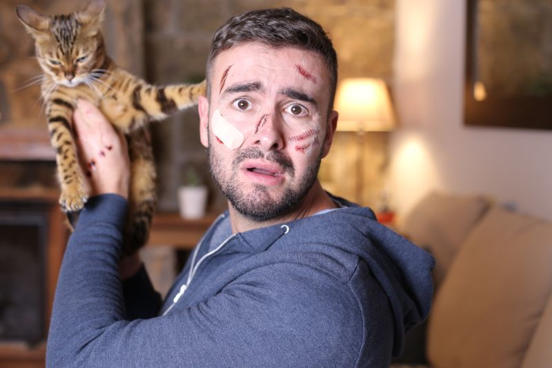 Man with scratches all over his face and hand holds cat.